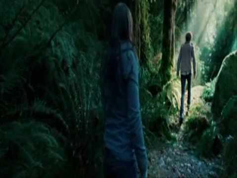 Twilight- Paramore - Decode