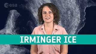 Earth from space: Irminger Sea ice swirl thumbnail