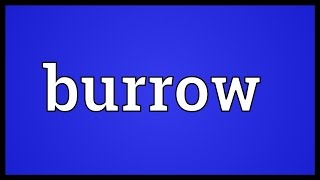 Burrow Meaning