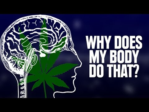 Why Does My Body Do That On Weed?