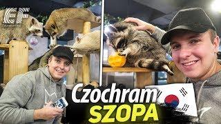 Czochram SZOPA