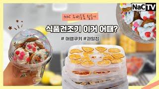 EP01.식품건조기 활용기! #머랭쿠키 #과일칩