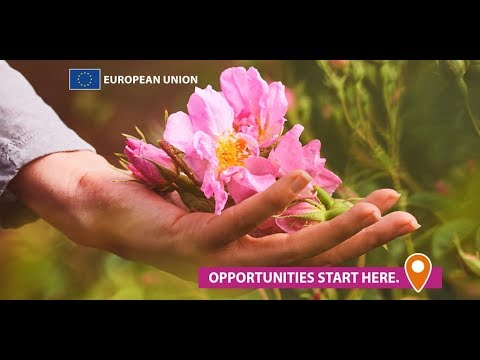 EU-funded project: new markets for Bulgarian rose oil