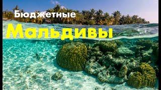 Лучшие бюджетные Мальдивы - 4 Vilamendhoo  Sland Resort