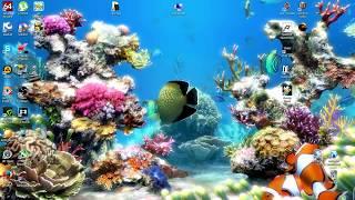 Прикольный аквариум на рабочий стол
