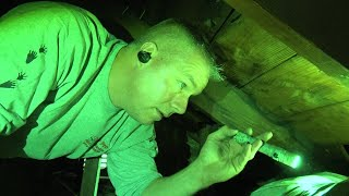 Download What Was Making Strange Noises in These Attics? Mp3 and Videos
