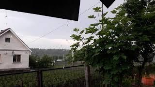 19 июня 2020 г. Московская область. Погода в 17.40) урря, дождь