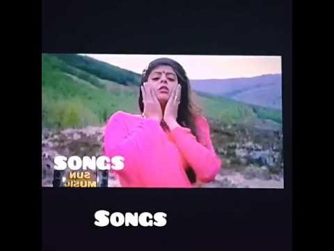 Malarkale Malarkale Song Lyrics in Tamil  Movie Love Birds