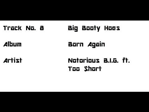 08   Big Booty Hoes Lyrics