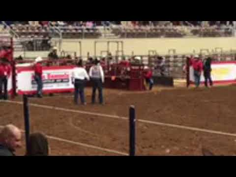 Round 1 at ALL American rodeo [roper Ty Harris] (not million dollar rodeo)