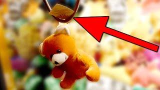 Bear Stuck by the Tag in a Claw Machine!! | Matt3756