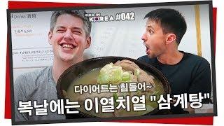 Korean Traditional Ginseng Chicken Soup 😅 Samgyetang Mukbang (Mika in Korea #042)