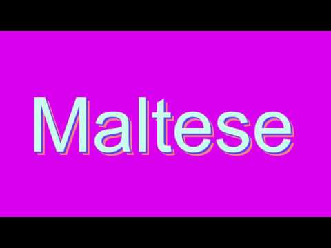 How to Pronounce Maltese