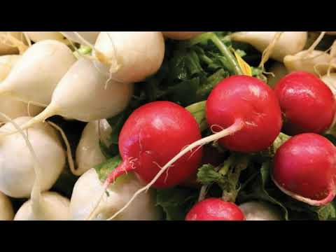 are-radishes-safe-during-pregnancy