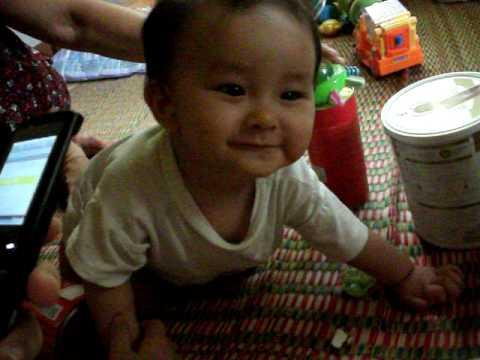 Cupid 8 tháng tuổi (07-2010)
