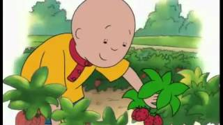 Caillou - Caillou Goes Strawberry Picking (Full)
