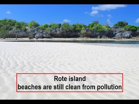 come on holiday to the southernmost island in Indonesia rote island