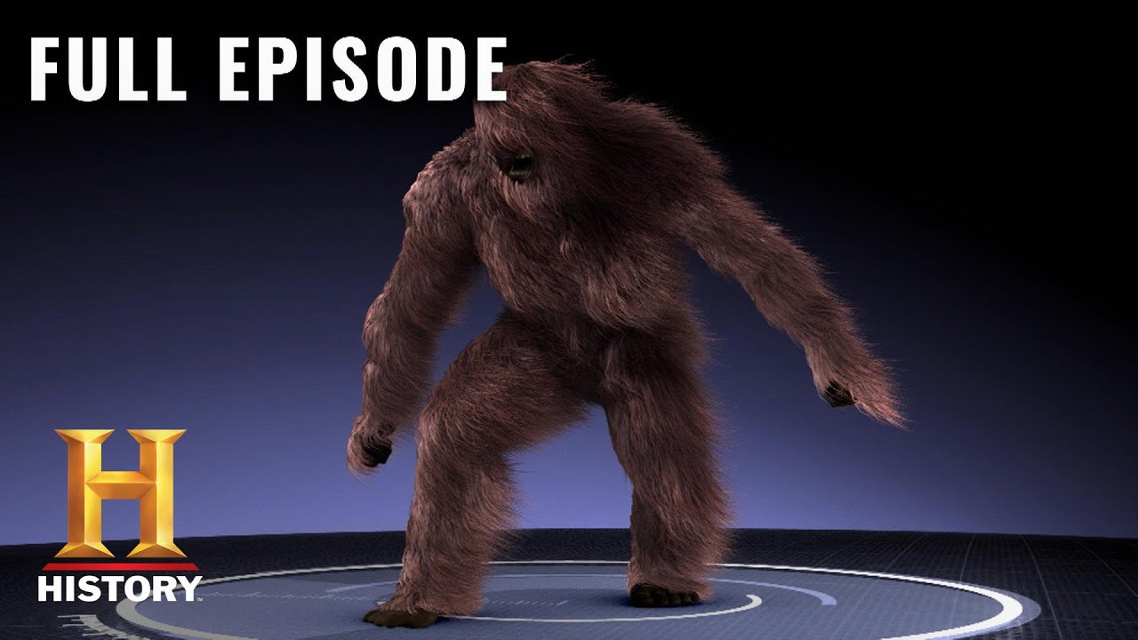 Download MonsterQuest: CRITICAL EVIDENCE OF SASQUATCH ENCOUNTERS (S3, E19) | Full Episode | History