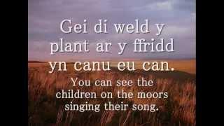 Tir Glas - Edward H. Dafis (geiriau / lyrics)