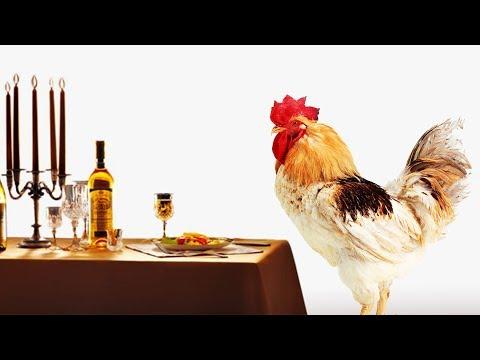 Чем МОЖНО кормить кур, а чем НЕТ? Вы будете удивлены!!
