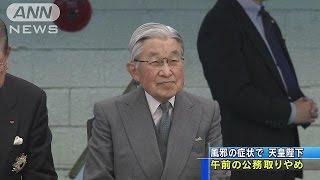 天皇陛下が風邪の症状のため、16日午前中に予定されていた公務を取りや...
