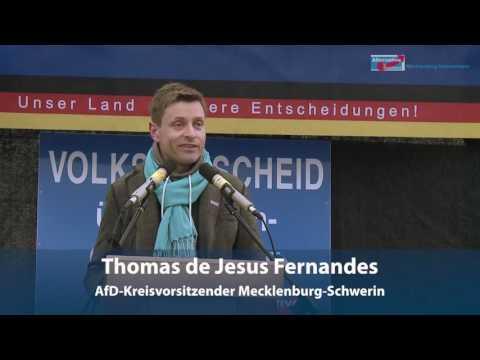 AfD Demo Schwerin 2111 2015  Rede Thomas de Jesus Fernandes