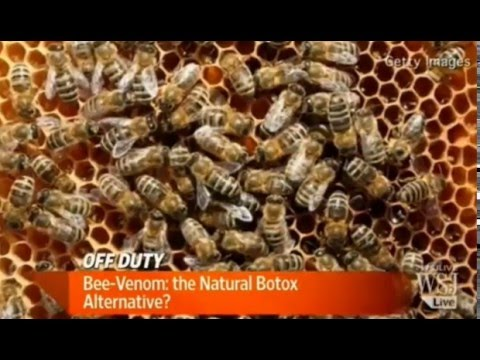 Wall Street Journal reports - Bee Venom,  Botox Alternative?