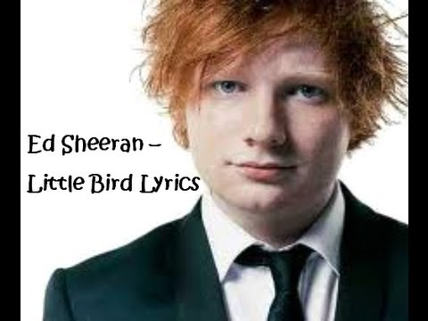 Ed Sheeran - Little Bird Lyrics