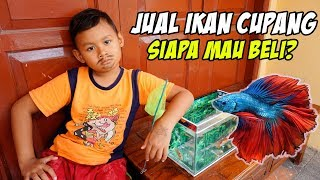 Drama Praya Jadi Paman Penjual Ikan Cupang Dan Ikan Koi