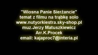 Brass Band - Wiosna Panie Sierżancie