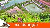 Champa Garden 530 221 4999 Thai And Lao Cuisine Asian Restaurants Redding Ca Youtube