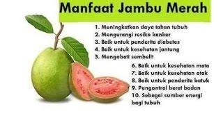 Manfaat 20 Jenis Buah dan Sayuran Yang Penting Untuk Kesehatan Tubuh Manusia