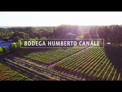 Humberto Canale: El concepto de empresa familiar está presente en toda la compañía