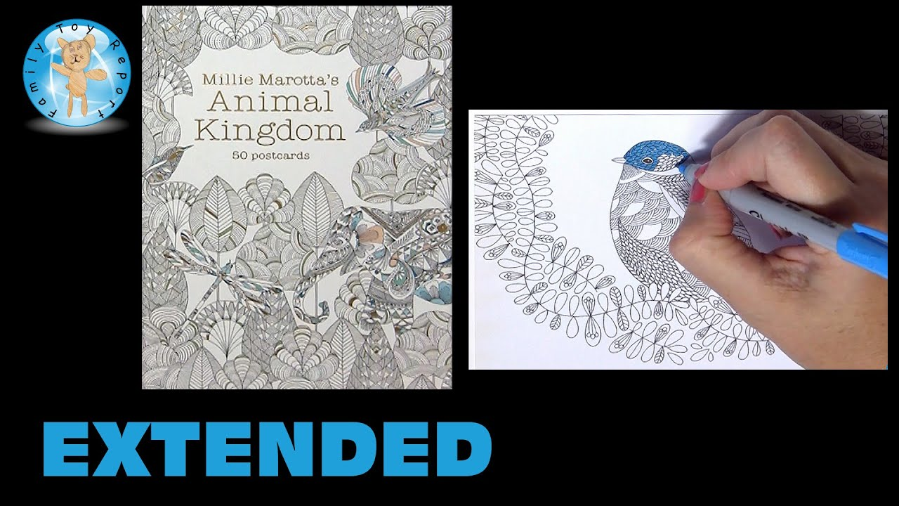 Millie Marottas Animal Kingdom Postcards Adult Coloring Book Bird Vine Extended Family Toy Report