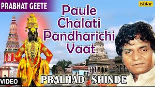 Top 14 - Paule Chalati Pandhrichi Vaat : Hits Of Pralhad Shinde | Audio Jukebox