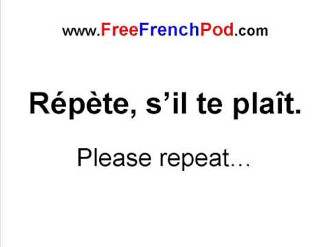 learn to speak french pdf