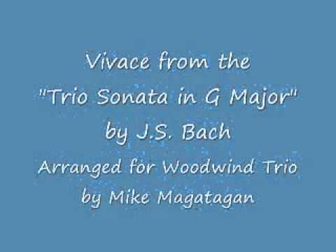 """""""Trio Sonata"""" in G Major Movement I Vivace (BWV 530) for Woodwind Trio"""
