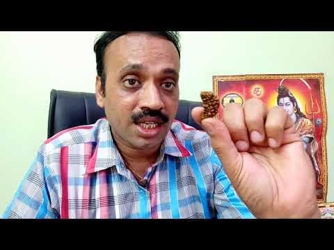 How to check Rudraksha Purity original or Plastic | Original Rudraksha Test in Hindi | Rudraksha