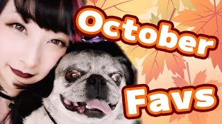 【October Favorites!】with my Pug, Gogo!
