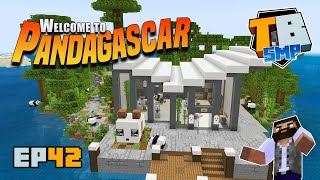 Welcome to Pandagascar! And something about beacons? | Truly Bedrock Season 2 [42] Minecraft Bedrock
