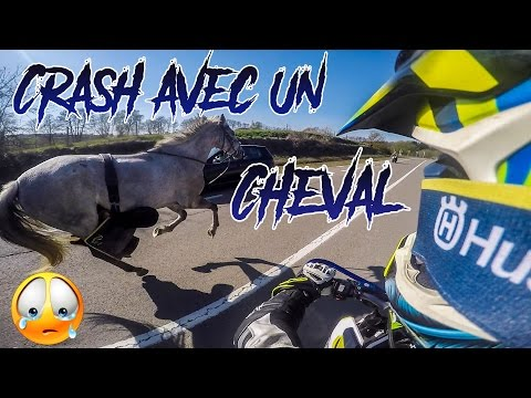 J'AI SAUVÉ UN CHEVAL EN CRASHANT MA MOTO! | HUSQVARNA 701 CRASH
