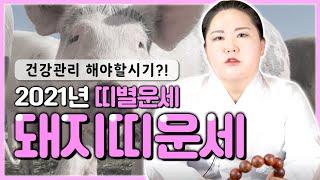"""2021년 신축년 띠별운세 """"돼지띠운세"""" 공개합니다!! 건강관리 해야 할 시기다?! [ 9…"""