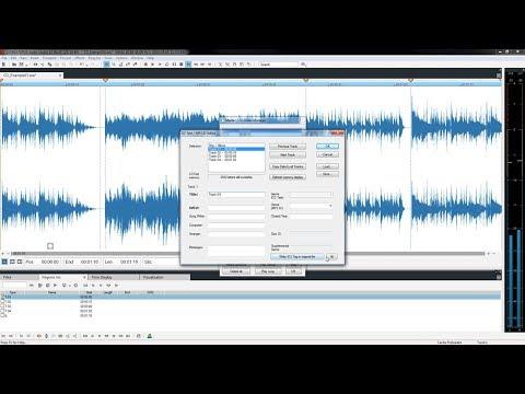 SOUND FORGE Audio Studio 12 – Digitize vinyl and restore recordings Tutorial