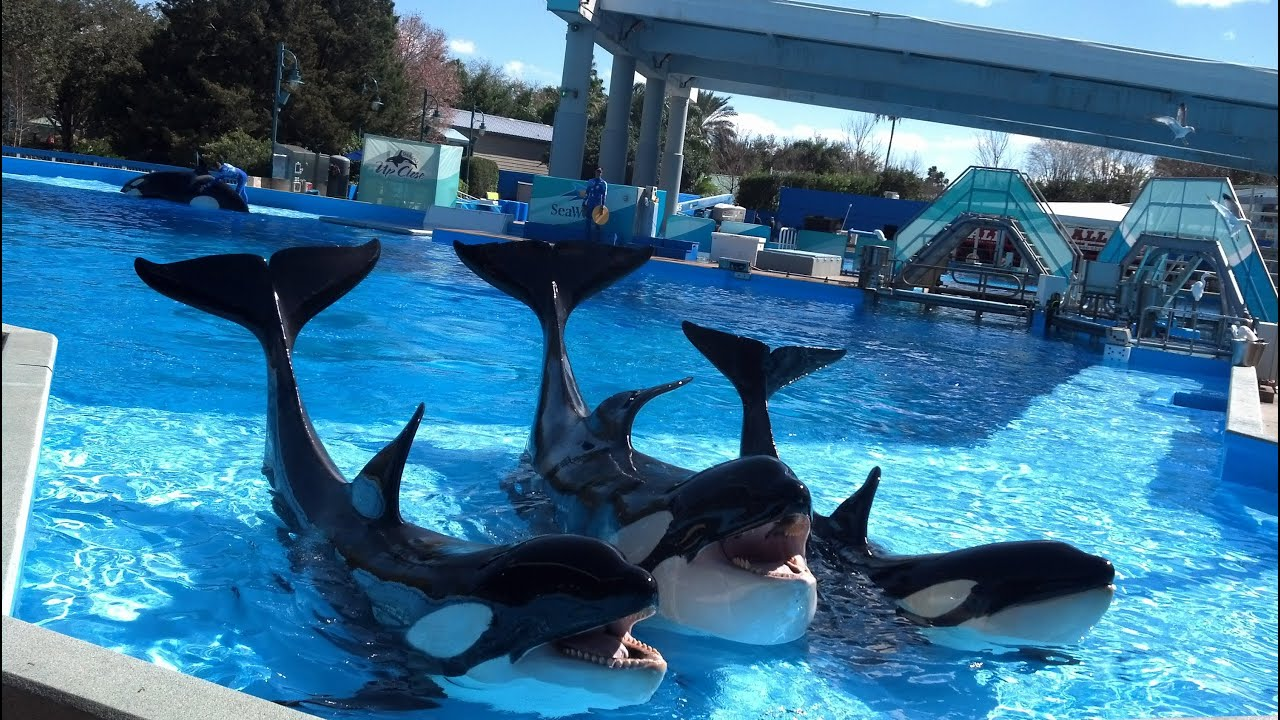 Seaworld San Diego Restaurants