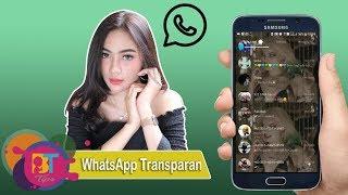 Gambar cover Download WhatsApp Trasparan 2019 ! Cara Mengubah WhatsApp Menjadi Trasparan