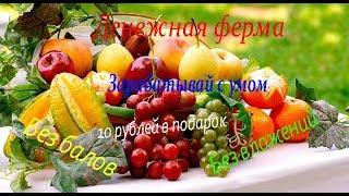 Играй и зарабатывай Лучшая фруктовая ферма !