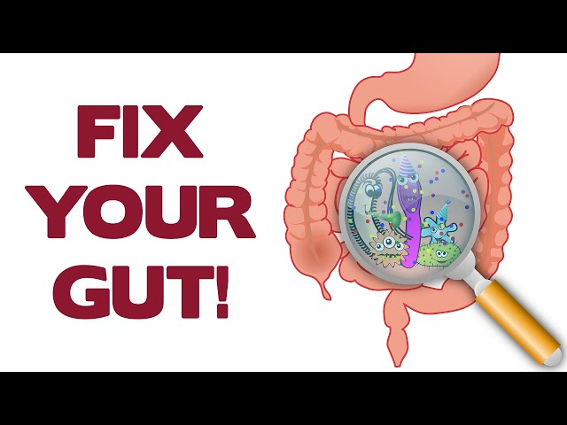 FIX YOUR GUT, IT'S POISONING YOU – Brain Maker by Dr. David Perlmutter