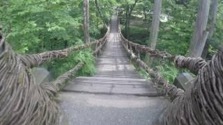 池田町のかずら橋!吊り橋効果は?