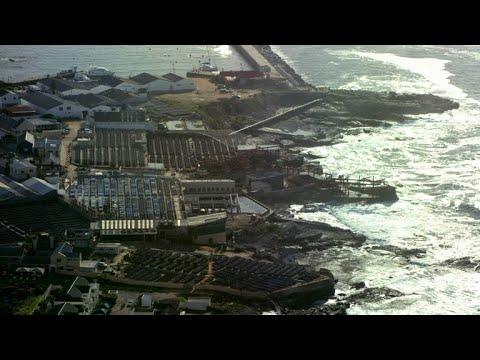 Inside South Africa's Multi-Million Dollar Seafood ...