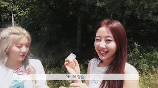 이달의소녀탐구 #381 (LOONA TV #381)